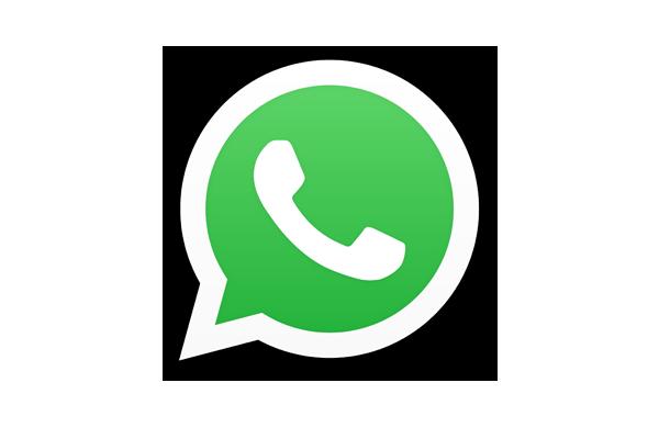 Whatsapp call e-commerce website development